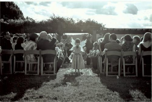 Wavehill Wedding