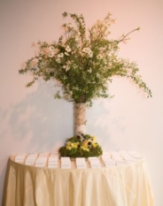 altman escort table